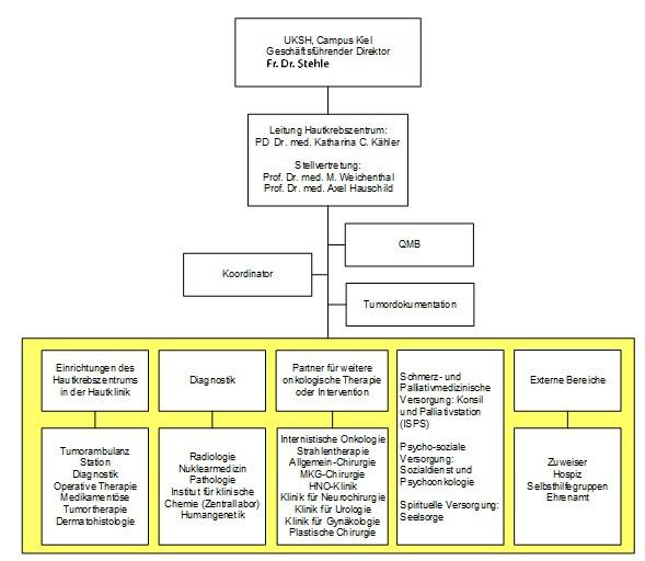 Organigramm des Hautkrebszentrums Kiel
